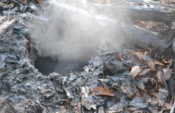 #03 阿寒の森と大地の息吹に触れる!ボッケ(泥火山)の森スノーウォーク