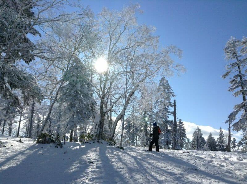 Mountain Peak Snow Trekking