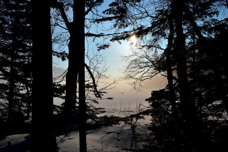 Bokke (Mud Volcano) Forest Snow Walk